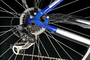 Le eccellenze bollenghine del ciclismo regalano grandi soddisfazioni